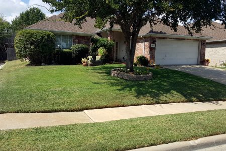 lawn-care-services-gallery-15