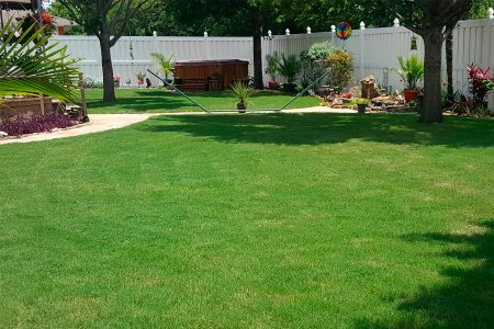 lawn-care-services-gallery-6